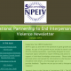 National Partnership to End Interpersonal Violence Newsletter