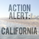 ACTION ALERT: California – Please start drafting your letters to the Governor.