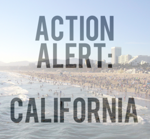 SOL Action Alert in California