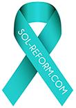 SOL Reform